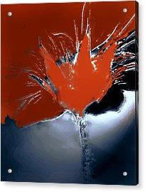 Poppy Explosion Acrylic Print by Irma BACKELANT GALLERIES