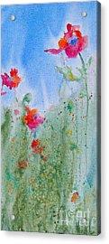 Poppy Field Flowers Acrylic Print by Reveille Kennedy