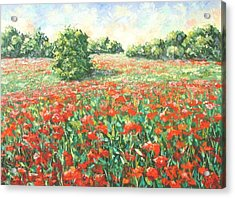 Poppy Field Provence South Of France Acrylic Print