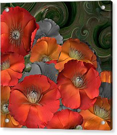 Poppy Acrylic Print by Stan Bowman