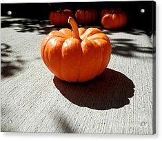 Poppy Pumpkin Acrylic Print