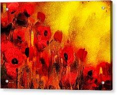 Poppy Reverie Acrylic Print