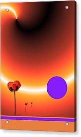 Poppy Sunset Acrylic Print by Tina Hariu