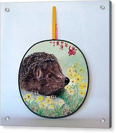 Porcupine Acrylic Print by Ying Wong
