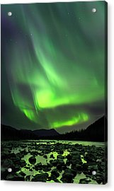 Portage Green Acrylic Print by Ed Boudreau