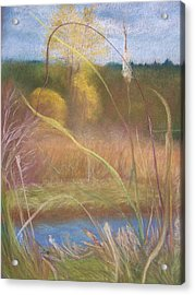 Portal Acrylic Print by Jackie Bush-Turner