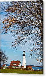Portland Head Afternoon Acrylic Print by Darren White
