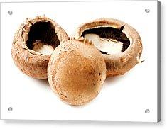 Portobello Mushrooms Acrylic Print