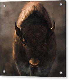 Portrait Of A Buffalo Acrylic Print