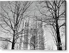 Portrait Of A Cathedral Acrylic Print