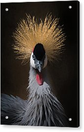 Acrylic Print featuring the digital art Portrait Of A Crowned Crane 2 by Ernie Echols