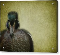 Portrait Of A Duck Acrylic Print by Rebecca Cozart