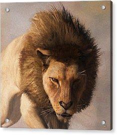 Acrylic Print featuring the digital art Portrait Of A Lion by Daniel Eskridge