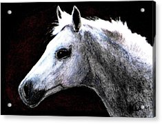 Portrait Of A Pale Horse Acrylic Print by Angela Davies