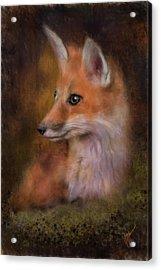 Portrait Of A Red Fox Acrylic Print