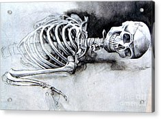 Portrait Of A Skeleton Acrylic Print by Linda Shackelford
