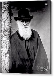Portrait Of Charles Darwin Acrylic Print by Julia Margaret Cameron
