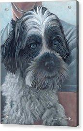 Portrait Of Charley Acrylic Print
