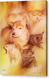 Portrait Of Chi Chi Acrylic Print by Denise Fulmer