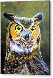 Portrait Of Great Horned Owl Acrylic Print by Dennis Clark