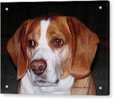 Portrait Of Rusty Acrylic Print
