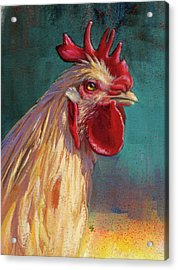 Portrait Of The Chicken As A Young Cockerel Acrylic Print