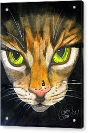 Portrait Of Tigger Acrylic Print by Chris Crowley