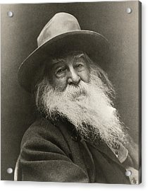 Portrait Of Walt Whitman Acrylic Print