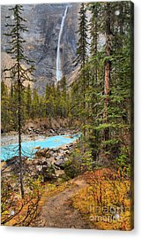 Acrylic Print featuring the photograph Portrait Of Takakkaw Falls by Adam Jewell