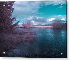 Acrylic Print featuring the digital art Post Flood Surreal by Chriss Pagani
