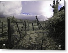 Acrylic Print featuring the photograph Post Storm by Chriss Pagani