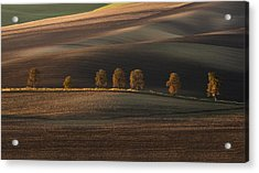Postcards From Moravia Acrylic Print by Jaroslaw Blaminsky