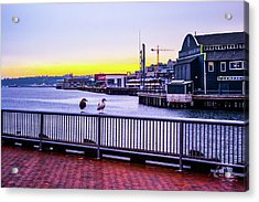 Posted  Acrylic Print