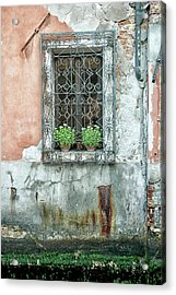 Pot Plant Window Acrylic Print
