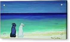 Lab Potcake Dogs On The Beach Acrylic Print