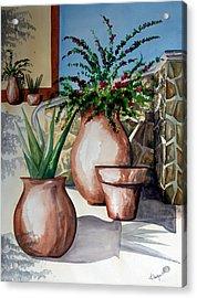 Pots And Bougainvillea Acrylic Print