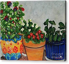Pots Showing Off Acrylic Print