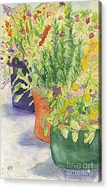 Acrylic Print featuring the painting Potted Beauties  by Vicki  Housel