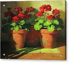 Potted Geraniums Acrylic Print by Linda Jacobus