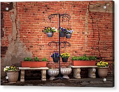 Acrylic Print featuring the photograph Potted Plants And A Brick Wall by James Eddy