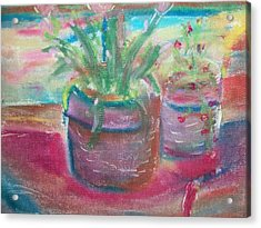 Potted Plants Acrylic Print by Bob Smith
