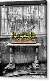 Potted Acrylic Print by Russell Styles