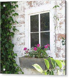 Potting Shed Window Acrylic Print by Janis Beauchamp