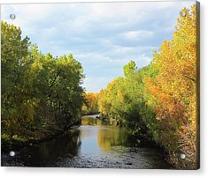 Poudre River In Fall Acrylic Print