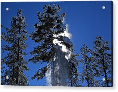 Powderfall Acrylic Print by Gary Kaylor
