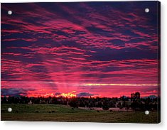 Powell Butte Oregon Sunset Acrylic Print