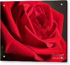 Power Of Love Acrylic Print