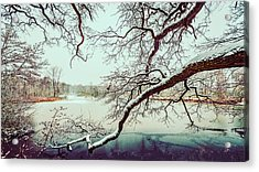 Power Of The Winter Acrylic Print