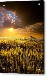 Praire Land Acrylic Print by Phil Koch