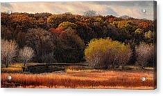 Prairie Autumn Stream Acrylic Print